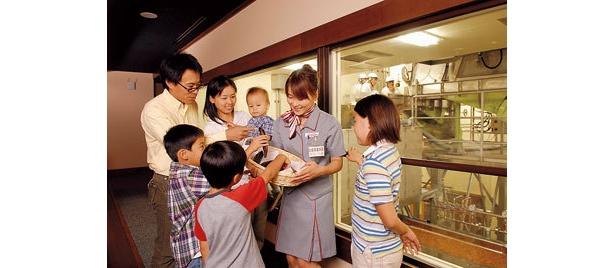 「味の素KK 川崎工場」では、かつお節にさわることができる