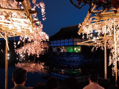 夜桜おすすめスポット:「東神苑」の対岸/コンサート時は南神苑を観賞後に、神苑出口から東神苑に入る。対岸に渡った直後の角から貴賓館を観賞するのがおすすめ