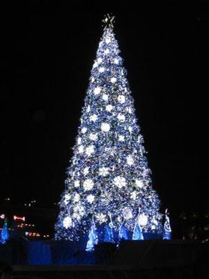 【写真を見る】ギネス認定!ユニバーサルスタジオジャパンのクリスマスツリー