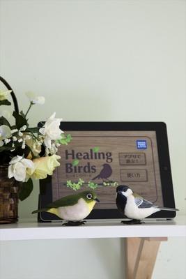 野鳥のさえずりに癒されるヒーリングバード