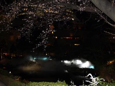 六本木ヒルズ毛利庭園の池には霧が…