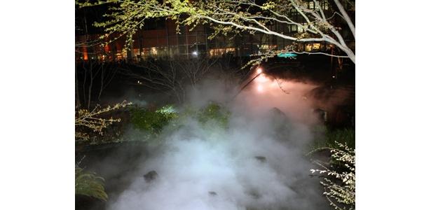 なんと幻想的!「中谷芙二子による霧とライトのインスタレーション」