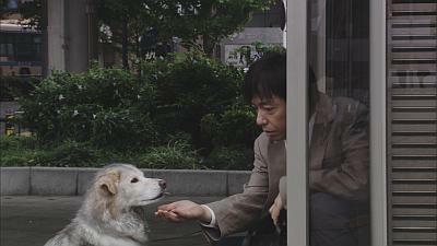 この犬も、物語の重要なキーポイント