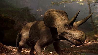 重量感がすごい!北米最大の角竜トリケラトプス