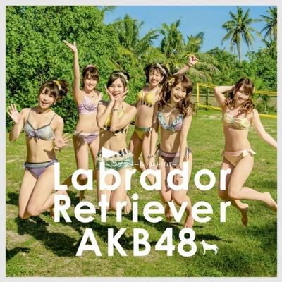 ラブラドール・レトリバー Type K<初回限定盤>(税抜1524円)