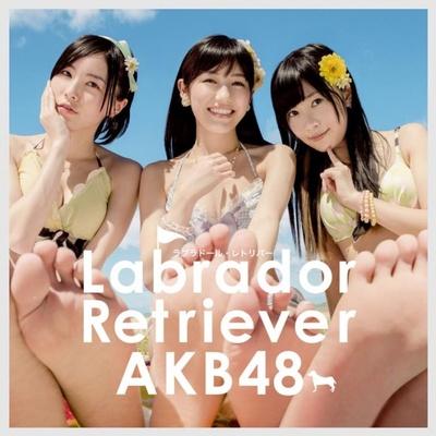 ラブラドール・レトリバー Type 4<初回限定盤>(税抜1524円)