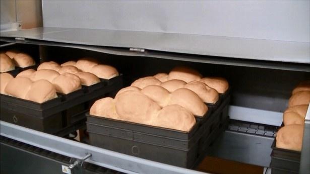 衣に使うパン粉は、隣接する工場でパン焼き上がったパンを使って作る