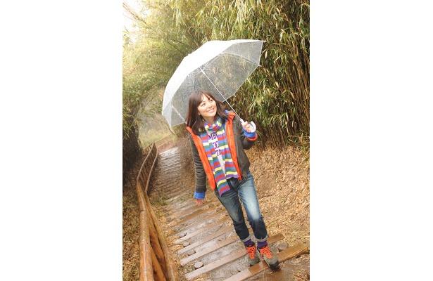 六国見山の山頂展望台へ。雨だったけど、緑のにおいが気持ちよかった!