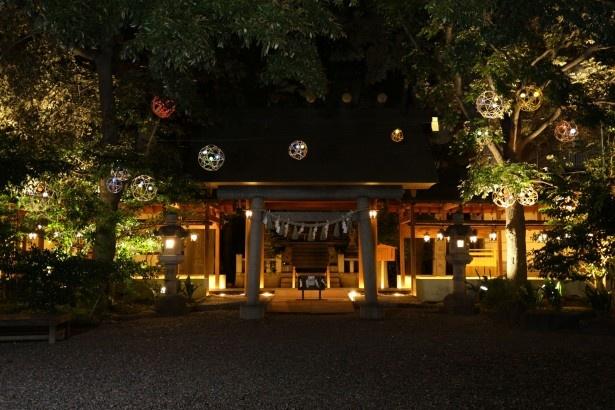 ライトによって浮かび上がる社殿と竹毬が幻想的