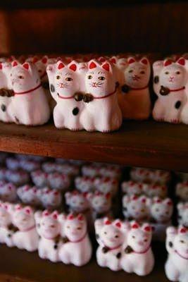 飛び売れの「今戸焼招き猫」(3000円)は売切中!予約再開はHPに掲載予定