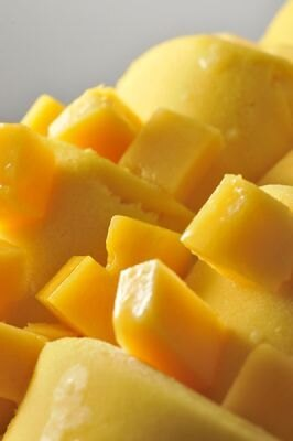 まるでマンゴーそのままを食べているみたい!マンゴー・マトゥーロ(オレンターノ イル ジェラート)