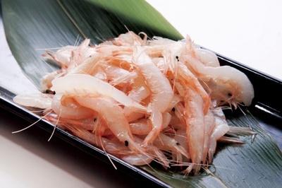 口に広がる上品な甘味が特長の富山湾で漁獲された白エビ