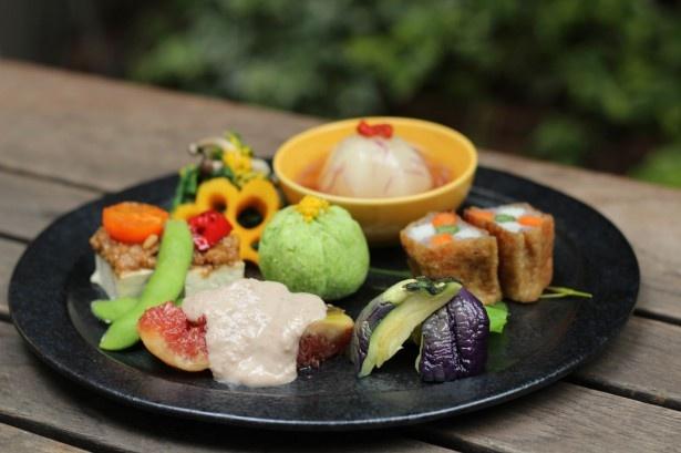 【写真を見る】彩りの良い旬の素材をたっぷり使った料理。体にも優しいメニューばかりだ
