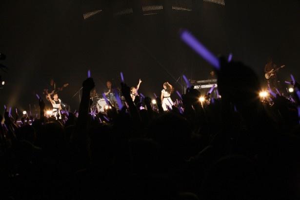12月6日(土)から30(火)にかけて全国6か所で「Dorothy Little Happy Winter Live Tour 2014」が行われることも発表された