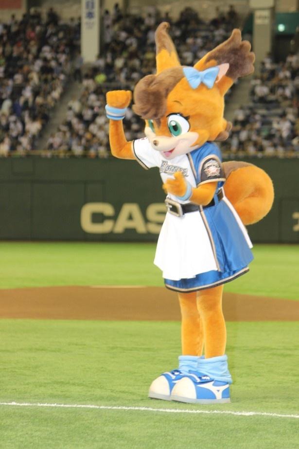 日本ハムファイターズのマスコットのポリーはとってもキュート