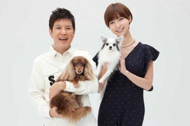 新番組「ペットの王国 ワンだランド」でMCを務める関根勤(左)と篠田麻里子(右)