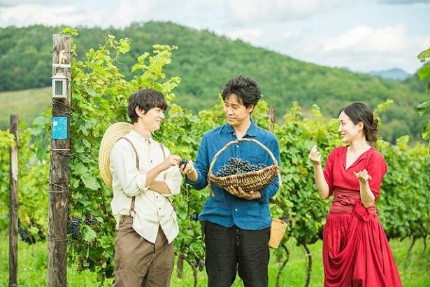 大泉洋オススメの北海道グルメ、空知産ワインって?