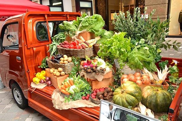 新鮮な野菜を集めた展示・販売ブースもあった