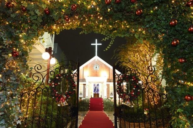 クリスマス限定の豪華なイルミネーションが特別な夜を演出