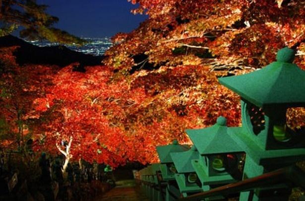 大山寺・大山阿夫利神社下社(神奈川県伊勢原市)では深紅に染まった紅葉や、相模湾を一望できる