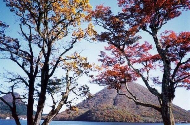 見頃を迎えた榛名山・榛名湖(群馬県高崎市)