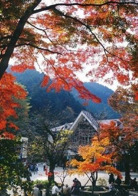 6位の高尾山(東京都八王子市)。高尾山は都心から電車で約1時間!