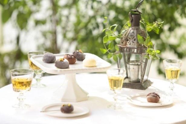 ジェラートをチョコレートでコーティングした「プラリネ」(5個セット1500円、10個セット2800円)は食後酒との相性も良い