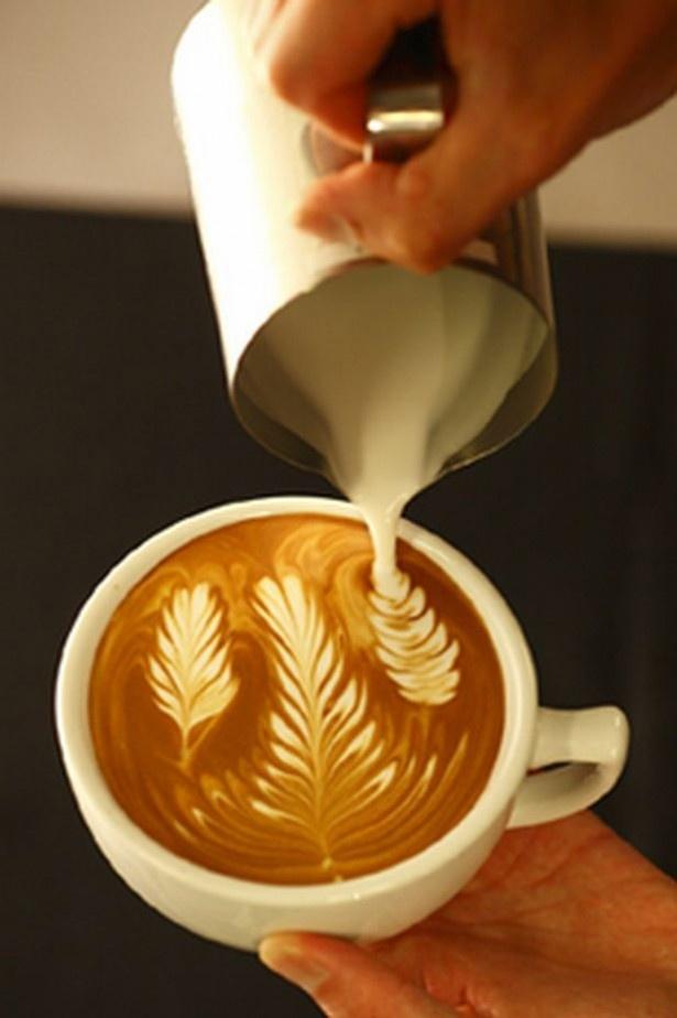 【写真を見る】世界最高レベルのラテアーを誇るSTREAMER COFFEE COMPANY