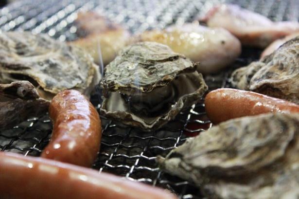 磯貝めんちゃんこのかきごやは、甘味の強い糸島産「みるくかき」が人気