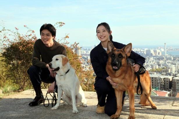 来年放送のドラマ「二十歳と一匹」で、災害救助犬のハンドラーとして成長していく菅田将暉演じる理人(左)と足立梨花演じるサラ(右)