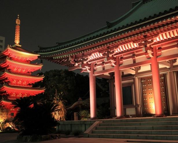 本堂と真っ赤な五重塔が印象的な東長寺
