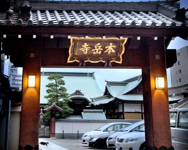 今年、ライトアップウォークに初参加する本岳寺。博多唯一の他宗から改宗した寺だ