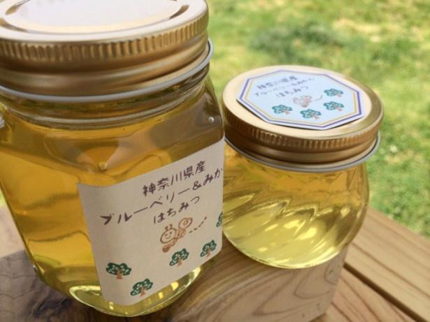 「移動カフェ thanks milk」は神奈川県産のハチミツも販売。40g¥450、(右)120g¥850、(左)250g¥1700