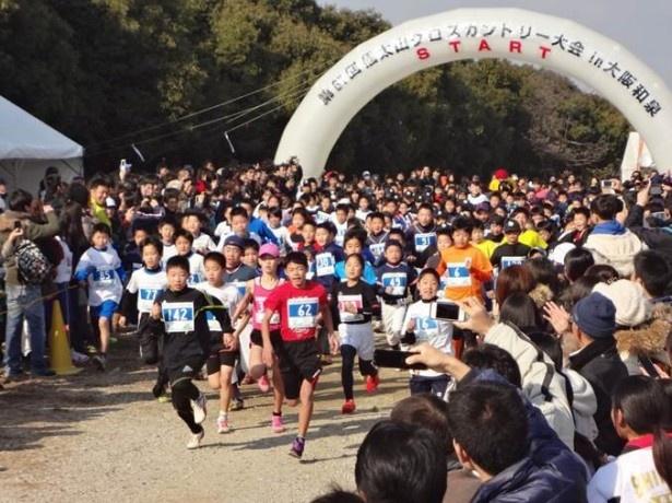 コースはアップダウンの多い、健脚向き。信太山の自然を楽しみながら気持ちよく走ろう!