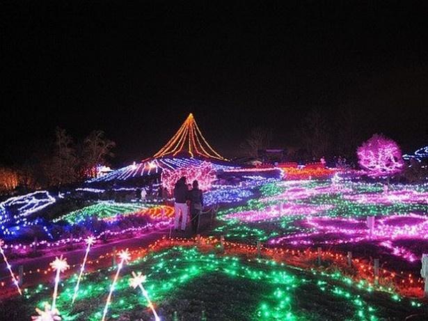 10位の国営讃岐まんのう公園(香川県仲多度郡まんのう町)は四国最大級のイベントを開催!50万球のイルミが輝く