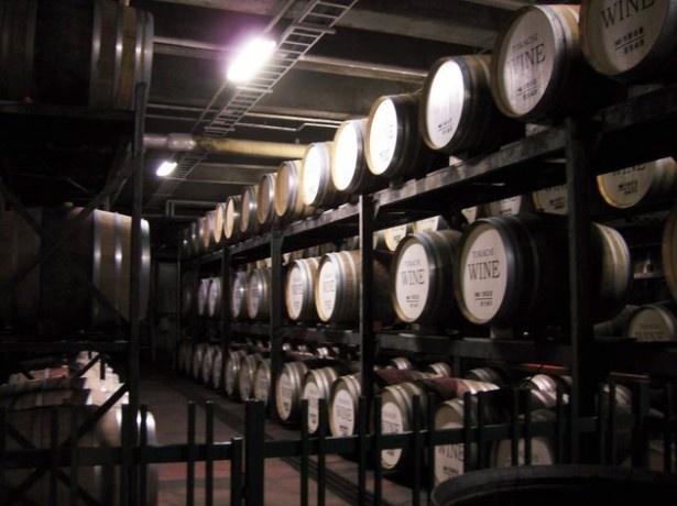 ワインが眠る地下熟成室も見学できる