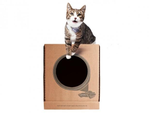 どんなインテリアにもぴったり合うシンプルなデザインで、愛猫にも大好評!?