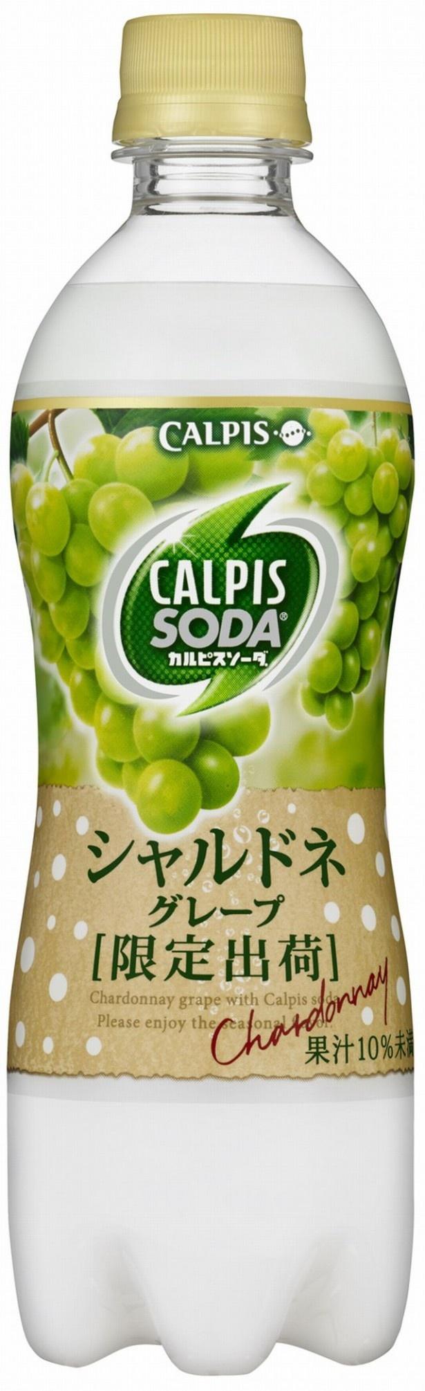 【写真を見る】1月末までの限定発売!シャルドネ果汁を加えた「カルピスソーダ シャルドネグレープ」(500mlペットボトル 税抜140円)