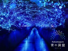 「さくらまつり」で有名な目黒川で光の洞窟を再現したイルミが点灯中!