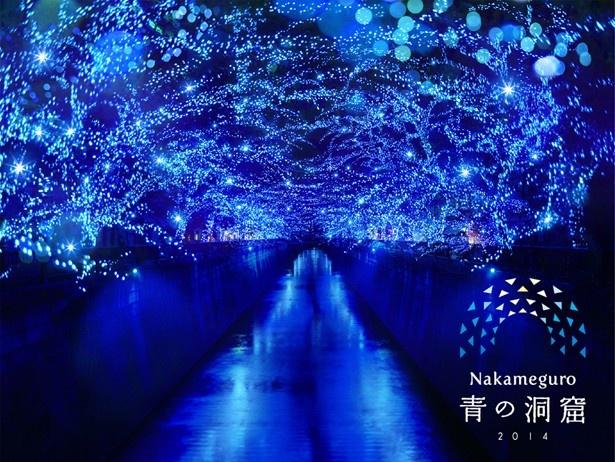 木々に灯された青い光と、水面に写りこんだ光が神秘的な雰囲気