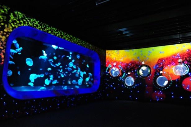 海洋ゾーンでは、浮遊するクラゲと近未来をイメージしたアップテンポの映像音楽が重なり不思議な空間を演出