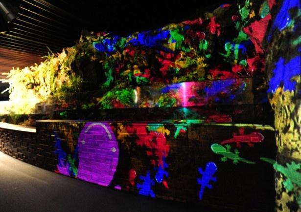 【写真を見る】京の川ゾーンでは、オオサンショウウオが水槽を飛び出し元気に壁を歩き回る