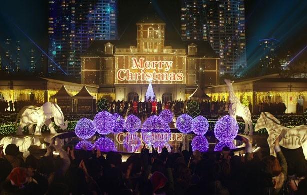 生田は「奇跡を信じたくなる映画」とアピール。クリスマス時期のイルミネーションも美しい!