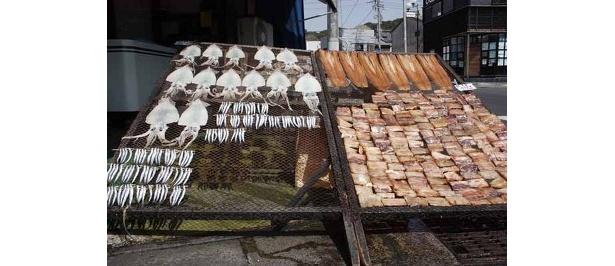 三浦半島の三崎では、干された干物にしょっちゅう遭遇