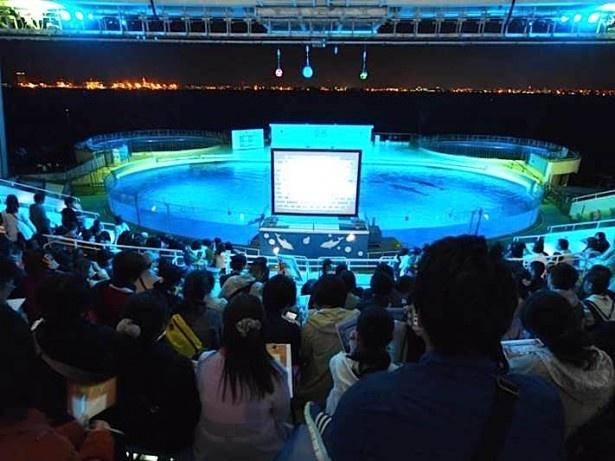 【写真を見る】舞台は閉館後の水族館…幻想的なイベントの模様をチェック