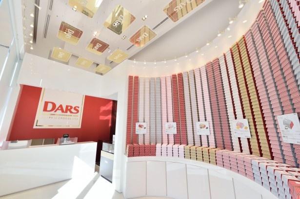 「DARS BRAND SHOP」店内。整然と高く積み上げられた「スペシャル DARS」(各800円)に圧倒される