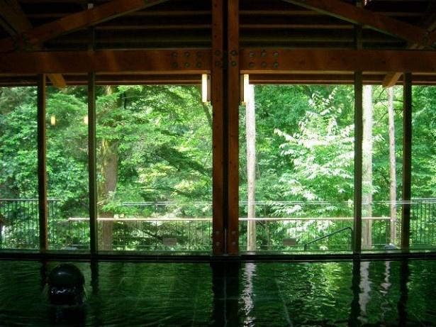 秋川渓谷 瀬音の湯は、アルカリ性単純硫黄泉の泉質で、血行促進と美肌効果が期待できる。内湯は加温のみの源泉かけ流し