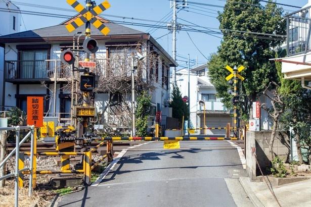 「秒速5センチメートル」のラストシーンと同じ構図。画面右にあった桜の木以外はほぼ同じ
