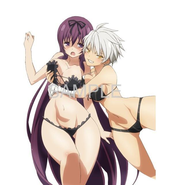 ソフマップでもらえる、雅緋と紫のクリアポスター