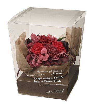 お母さんも癒されるお花